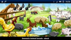animals singing