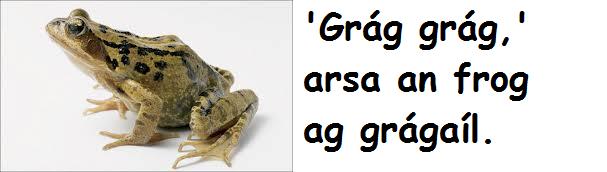 Frog grágaíl