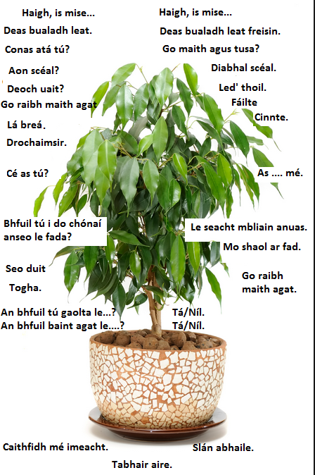 Grow Gaeilge 4