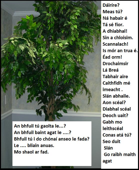 Grow Gaeilge 4b