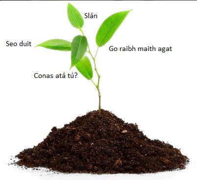 Grow Gaeilge