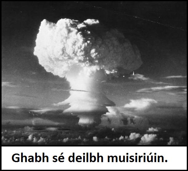Frása Foclóir Deilbh M
